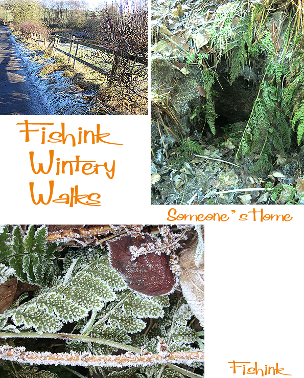 Fishinkblog 5267 Fishink Walks 3