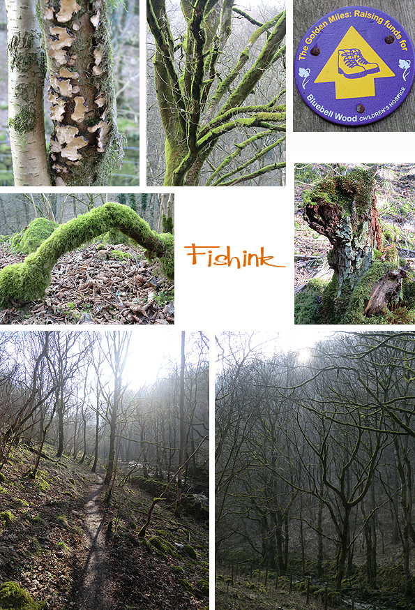 Fishinkblog 5643 Fishink Walk Tideswell 9