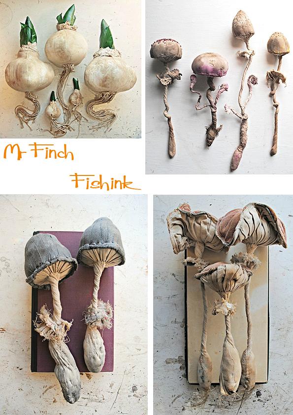 Fishinkblog 5696 Mr Finch 7