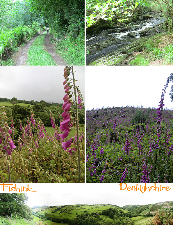 Fishinkblog 6102 Fishink in Denbighshire 1