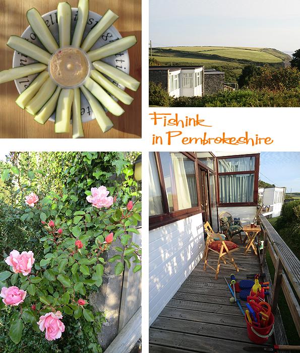 Fishinkblog 6201 Pembrokeshire 1