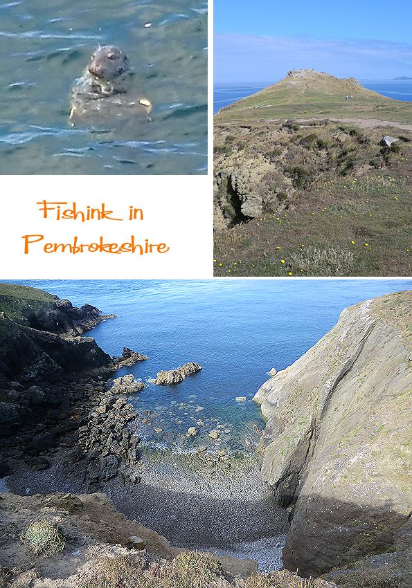 Fishinkblog 6203 Pembrokeshire 3