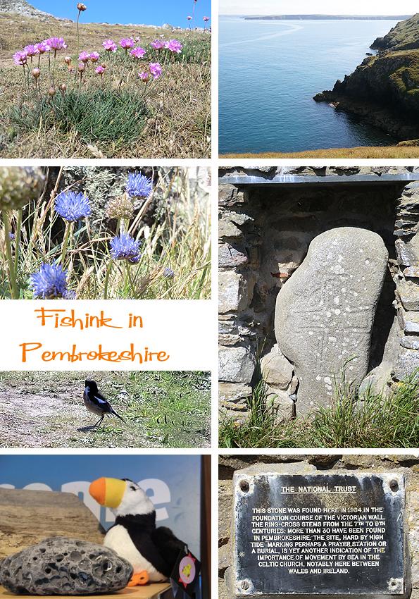 Fishinkblog 6204 Pembrokeshire 4