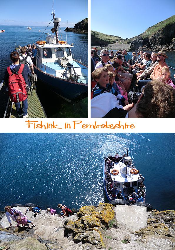 Fishinkblog 6206 Pembrokeshire 6