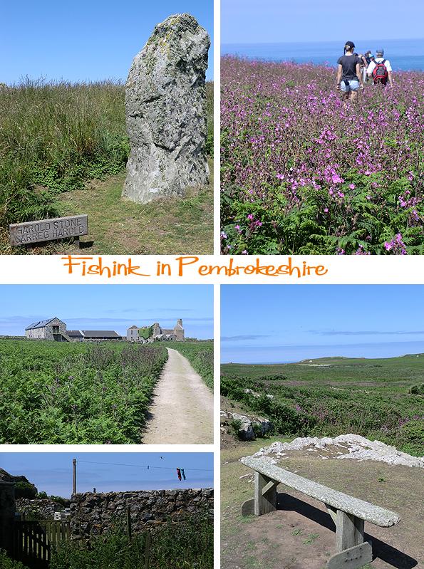 Fishinkblog 6209 Pembrokeshire 9