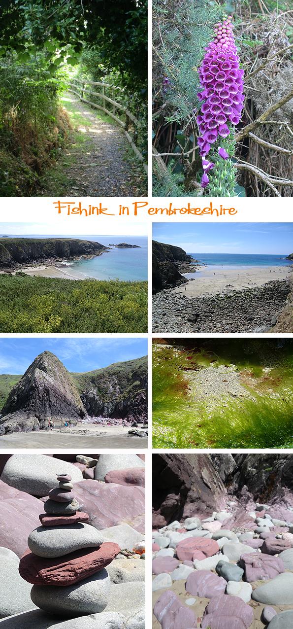 Fishinkblog 6218 Pembrokeshire 18