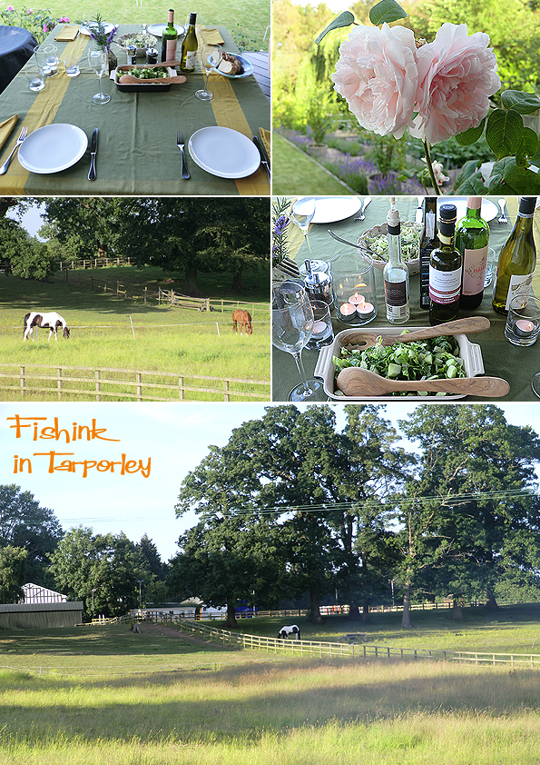 Fishinkblog 6238 Tarporley 6