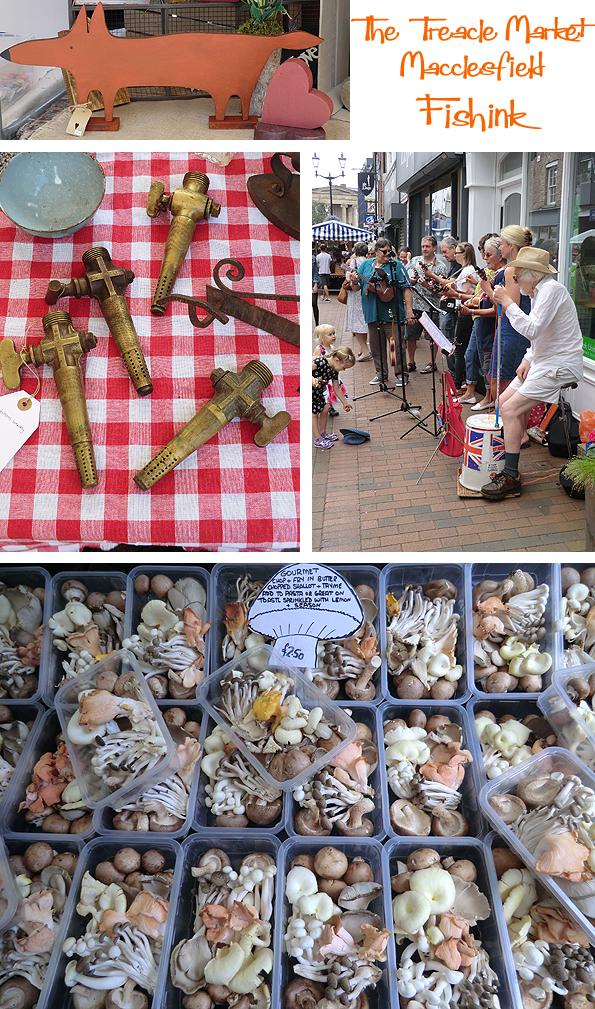 Fishinkblog 7916 Fishink Macc Treacle Market 5