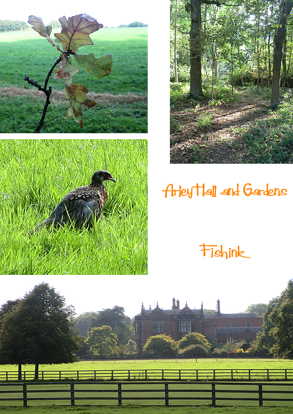 Fishinkblog 8110 Arley Hall 1