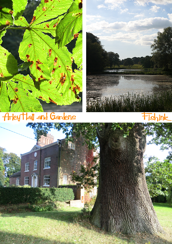 Fishinkblog 8114 Arley Hall 5
