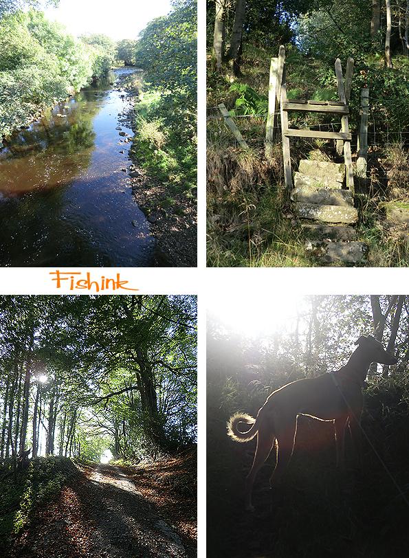 Fishinkblog 8233 Fishink Camping 3