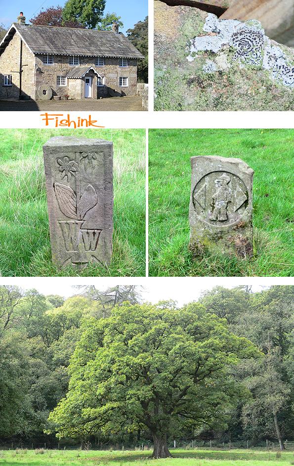Fishinkblog 8238 Fishink Camping 8