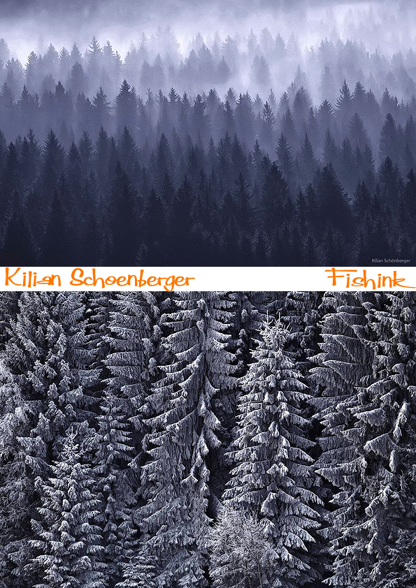 Fishinkblog 8369 Kilian Schoenberger 1