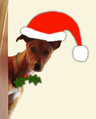Christmas Boo