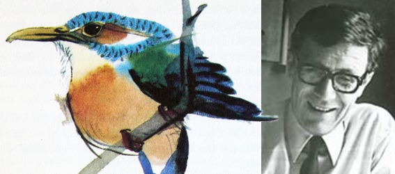 Fishinkblog 8448 Mirko Hanak 6
