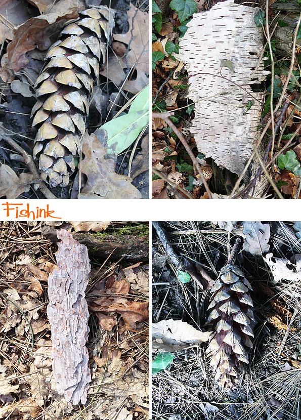 Fishinkblog 8915 Fishink Spring Walk 3
