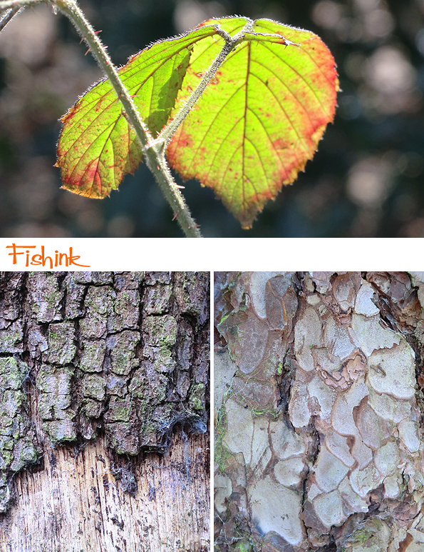 Fishinkblog 8916 Fishink Spring Walk 4
