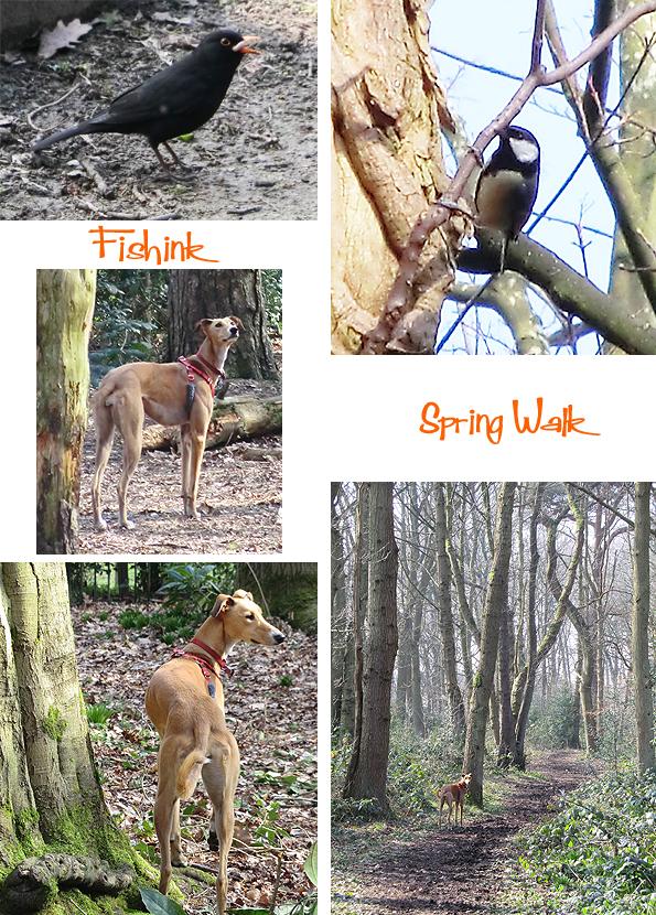Fishinkblog 8918 Fishink Spring Walk 6