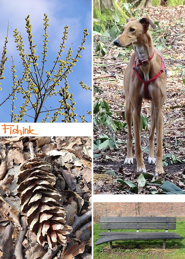 Fishinkblog 8921 Fishink Spring Walk 9