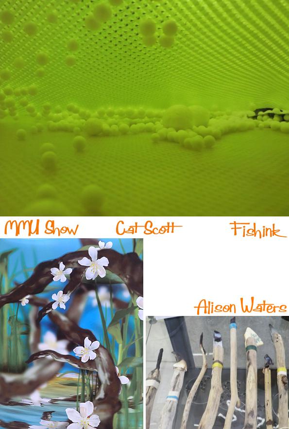 Fishinkblog 9302 MMU Degree 2015 7