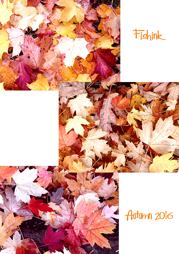 fishinkblog-10267-autumn-2